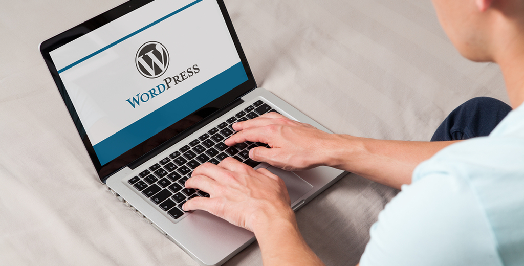 Customising WordPress Plugins
