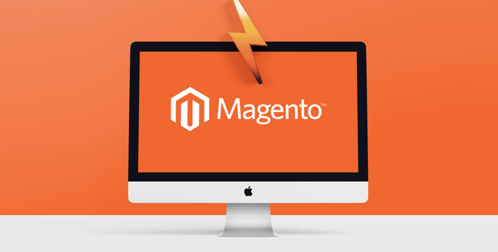 Completed-Magento-Project-Wellthlink