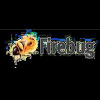wordpress developement firebug Logo