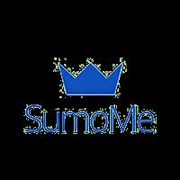 wordpress developement SumoMe